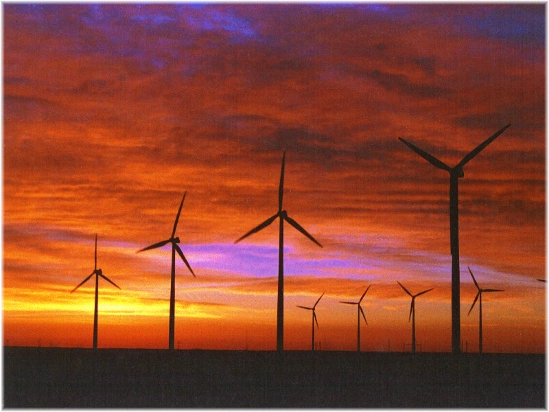 wind turbines cost. Each wind turbine cost about